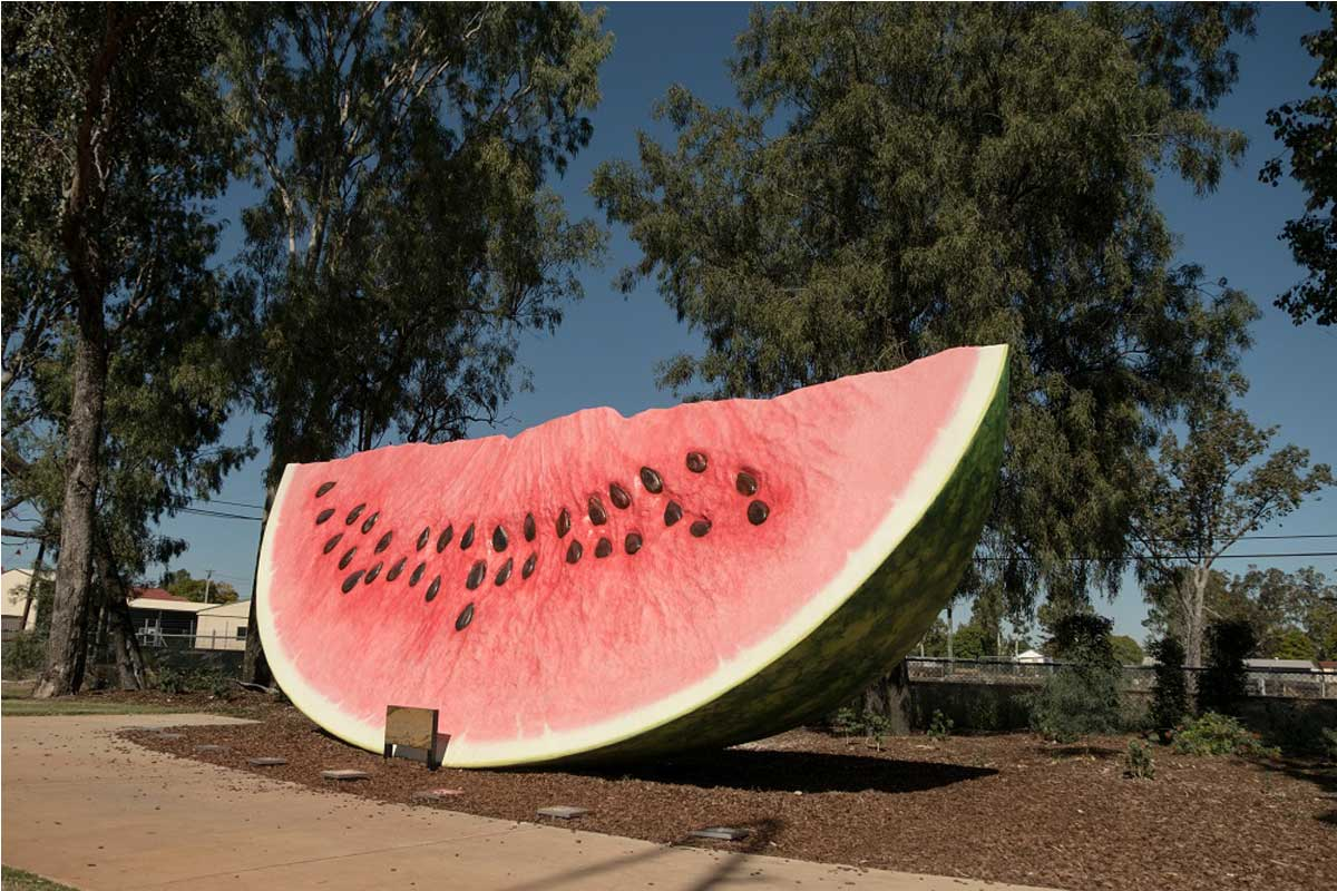 chinchilla watermelon public art